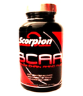 Scorpion Nutrition BCAA's 120 Tabs